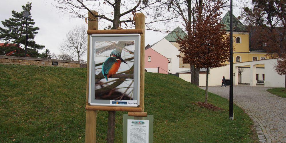 Řeka Bystřice – výstava fotografií pod otevřeným nebem
