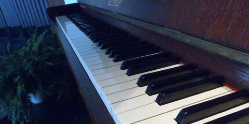 Petrof Piano Trio a hosté