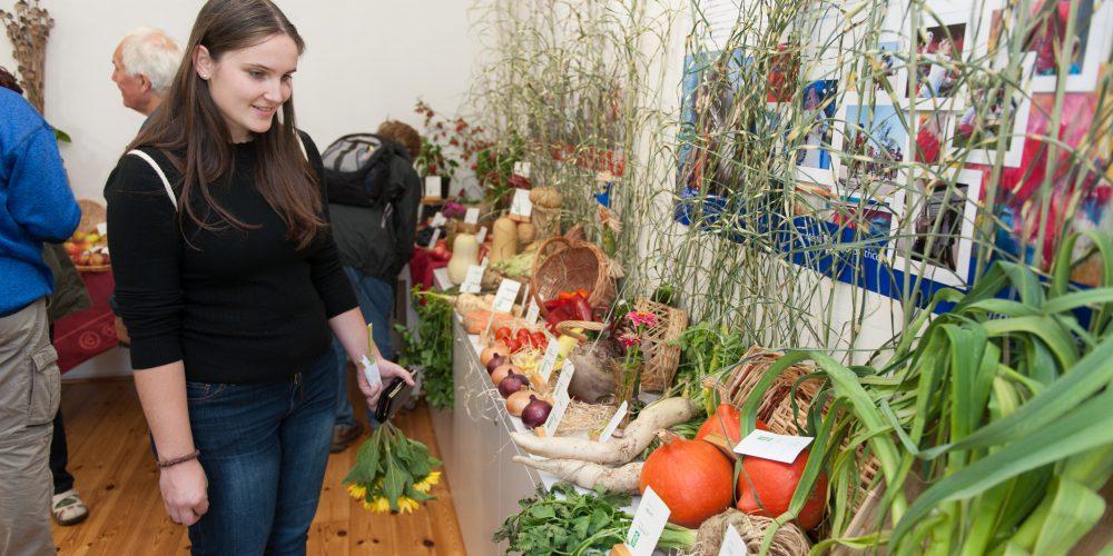 Podzimní výstava květin, ovoce a zeleniny
